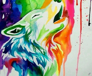 wolf and colors image