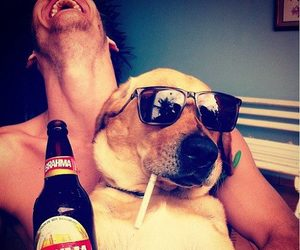 beer, fun, and life image
