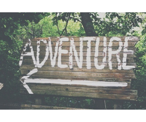 adventure, tropical, and tumblr image