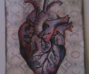 greys anatomy, heart, and anatomy art image