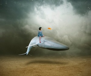 color, whale, and child image
