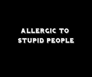stupid, people, and quote image