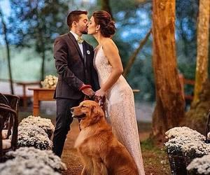 meu casamento image
