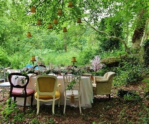 forest and tea image