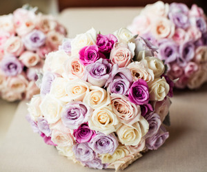 flowers, rose, and pretty image