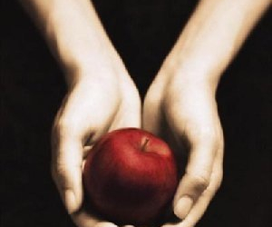 twilight, book, and apple image