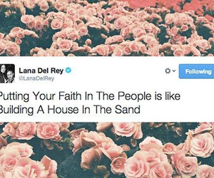 quote, twitter, and lana del rey image