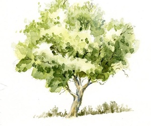 art, tree, and watercolour image