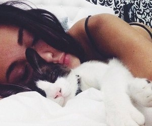 cat, girl, and sleep image
