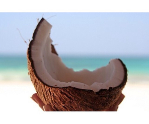 coconut, pink, and beach image