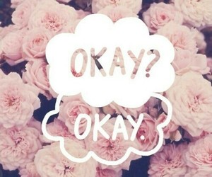 okay, the fault in our stars, and okay? image