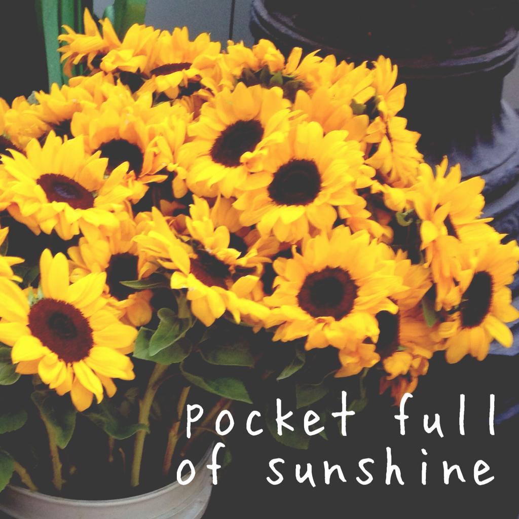 Pocket Full Of Sunshine By Chelseapearl On We Heart It