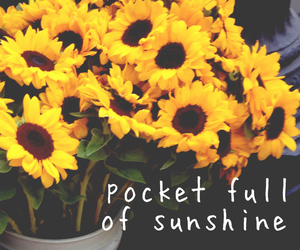 flowers, sunshine, and sunflower image