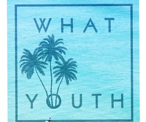 surf and youth image