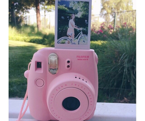 camera, flower, and flowers image
