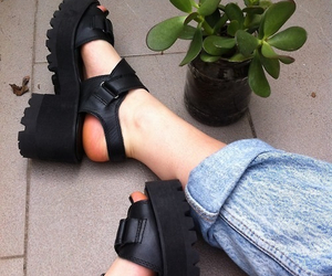 shoes, black, and plants image