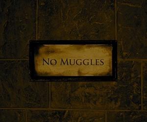 muggles, harry potter, and no muggles image