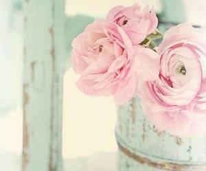 flower, pink, and vintage image