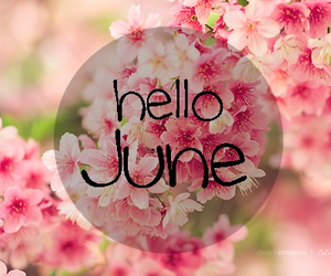 Exceptional June, Summer, And Flowers Image