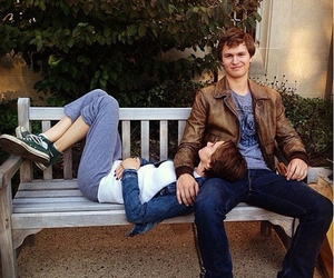 tfios, the fault in our stars, and Shailene Woodley image
