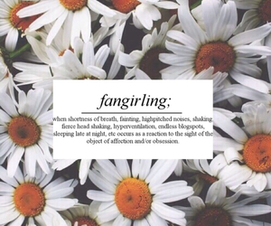 artsy, daisies, and definition image