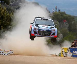 dust, fly, and rally image