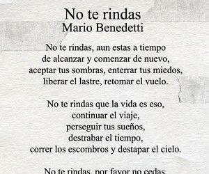 don't give up, mario benedetti, and phrases image