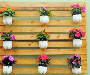 diy flower display image