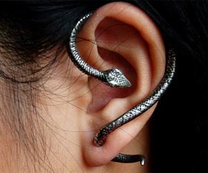 creative, ear, and fashion image