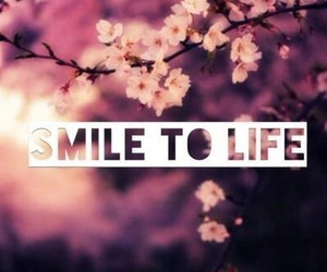 smile, life, and flowers image