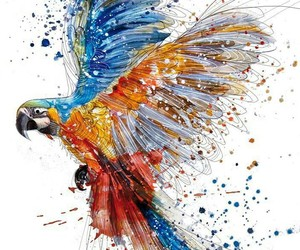 art and parrot image