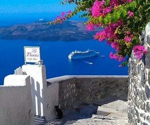 Greece, summer, and flowers image