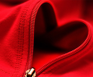 heart, zipper, and red image