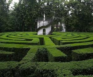 amazing, garden, and maze image