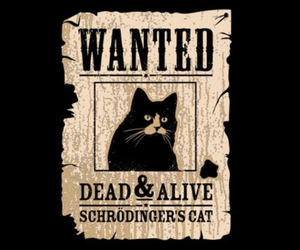 schrodinger's cat, cat, and wanted image