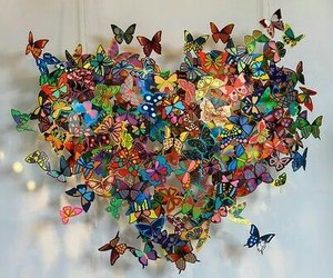 beautiful, butterfly, and heart image