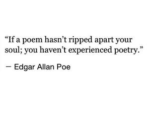 edgar allan poe, favorite, and poem image