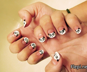 nails, pandas, and potography image