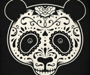 panda and mexican skull image