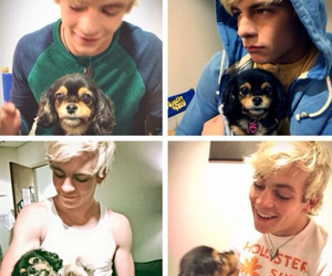 ross lynch, r5, and dog image