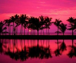 pink, sunset, and beach image
