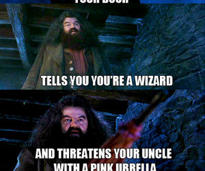 harry potter, funny, and hagrid image