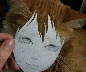 cat and anime image