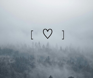 forest, grunge, and heart image