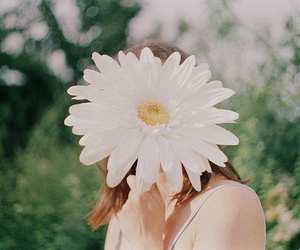 flowers, girl, and photography image