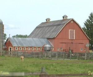 superman, smallville, and hent farm image