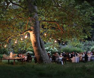 light, tree, and wedding image