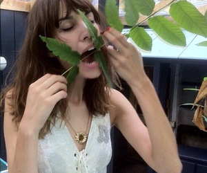 alexa chung, plants, and model image