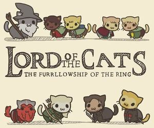 cat, lord of the rings, and funny image