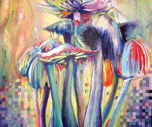 art, colorful, and mushrooms image